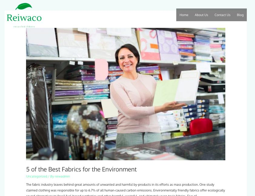 Scize – Get a customized organic SEO blog